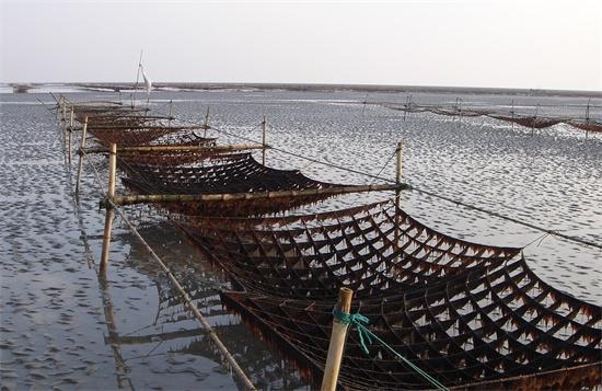 协和公司海上养殖场